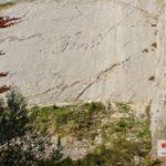 Die Spuren der Dinos